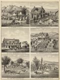 Residences, Brewery, ranches. Solano County, CA, 1878